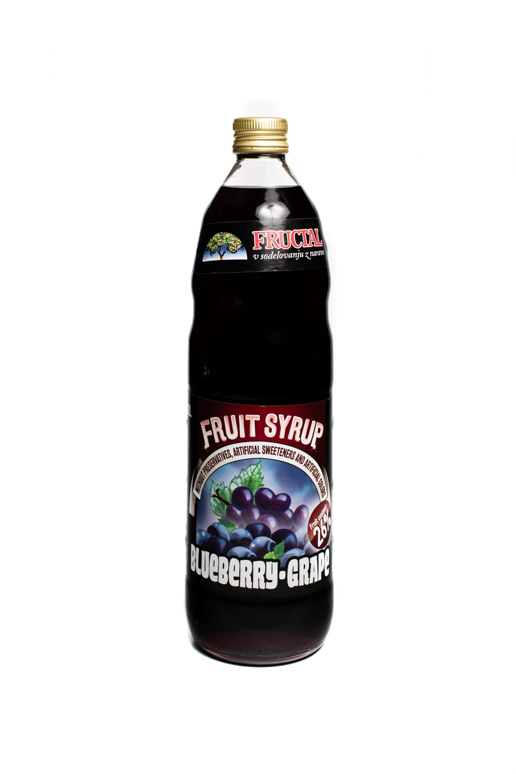 Fructal Syrup | 1 L | Blueberry